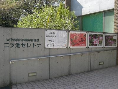 140417_blog1.jpg